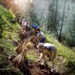 Строительство тропы Листвянка - Большие Коты. Склон в пади Емельяниха
