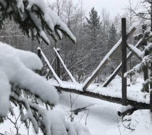 Мост Спаси и сохрани зимой 2017